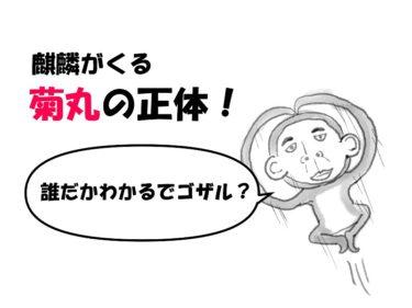 【麒麟がくる】菊丸(岡村)の正体は忍者:服部半蔵!歴オタが3つの理由から考察するぜ!